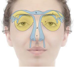 Incontro sulla riflessologia facciale